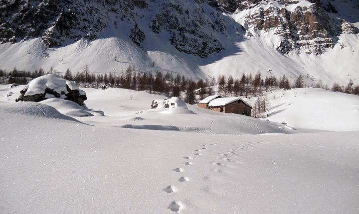 Racchette da neve a Viviere